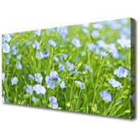 Obrazy, Obraz na Płótnie Kwiaty Trawa Roślina Natura