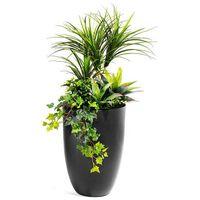 Rośliny, Kompozycja roślinna z donicą, czarny