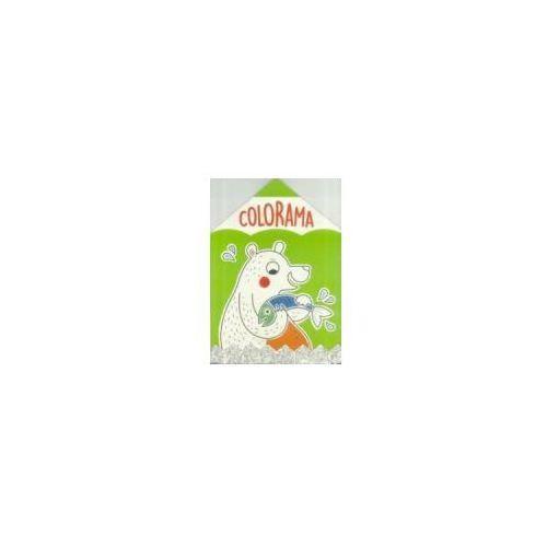 Książki dla dzieci, Colorama Niedźwiadek (opr. miękka)