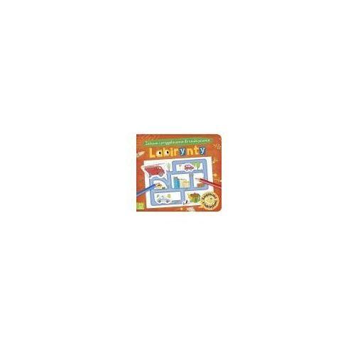 Książki dla dzieci, Labirynty zabawa i przygotowanie do nauki pisania (opr. miękka)