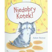 Literatura młodzieżowa, Niedobry kotek (opr. twarda)