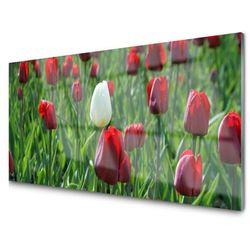 Panel Szklany Tulipany Kwiaty Natura