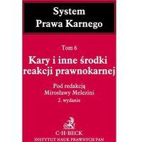 Książki prawnicze i akty prawne, Kary i inne środki reakcji prawnokarnej System Prawa Karnego Tom 6 - Mirosława Melezini (opr. twarda)