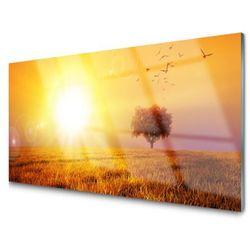 Obraz Szklany Zachód Słońca Łąka Ptaki