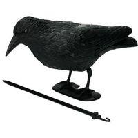 Środki na szkodniki, Kruk na balkon. Sztuczny kruk odstraszacz ptaków, na gołębie.