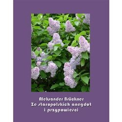 Ze staropolskich anegdot i przypowieści - Aleksander Brückner - ebook