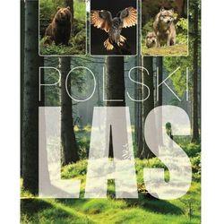 Polski las - Joanna Kapusta, Piotr Kapusta DARMOWA DOSTAWA KIOSK RUCHU (opr. twarda)