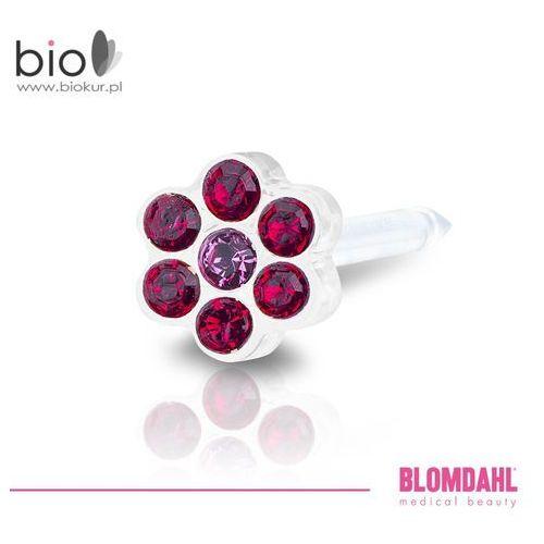 Akcesoria do kolczykowania, Kolczyk do przekłuwania uszu Blomdahl - Daisy Ruby / Rose 5 mm