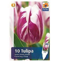 Tulipany Flaming Flag