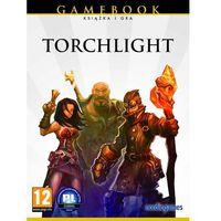 Gry PC, Torchlight (PC)