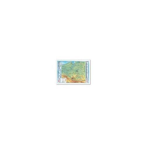 Pozostałe artykuły szkolne, Podkład dwustronny z mapą Polski - 0318-0017-99