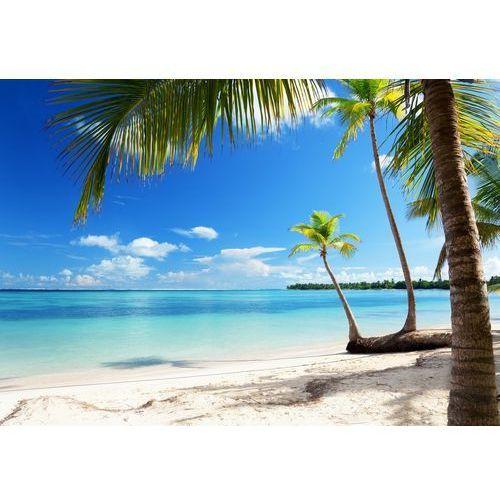 Fototapety, Fototapeta Caribbean Sea 954