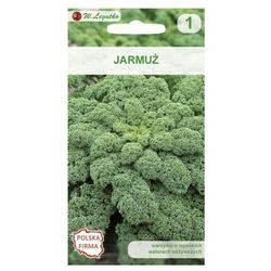 Jarmuż HALBHOHER GRÜNER KRAUSER nasiona tradycyjne 2 g W. LEGUTKO