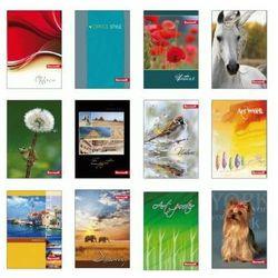 Brulion A6/96 kartek w kratkę Office 320 [10 szt.]