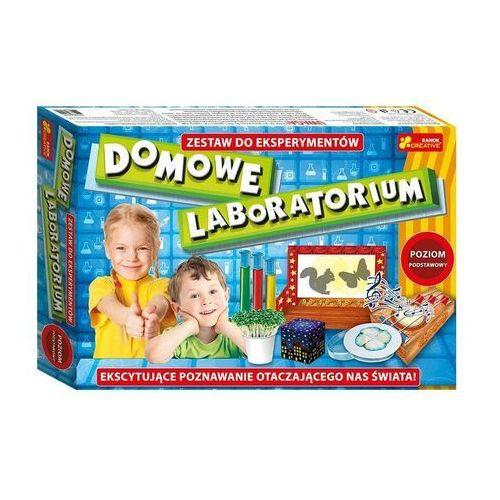 Kreatywne dla dzieci, Domowe laboratorium - poziom podstawowy