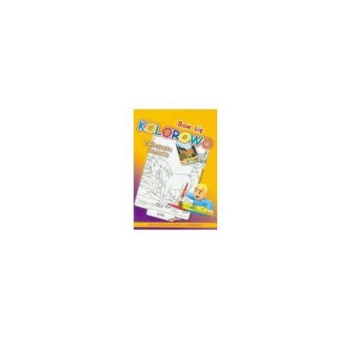 Książki dla dzieci, Baw się kolorowo - zwierzęta domowe liwona (opr. broszurowa)