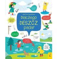 Literatura młodzieżowa, Dlaczego deszcz pada? co i jak? - marta krzemińska