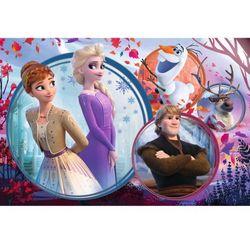 Puzzle 160 siostrzana przygoda - frozen 2 15374