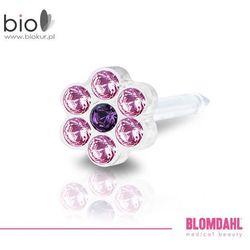 Kolczyk do przekłuwania uszu Blomdahl - Daisy Light Rose / Amethyst 5 mm