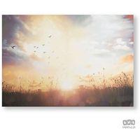 Obrazy, Obraz Łąka o zachodzie słońca 105890 Graham&Brown