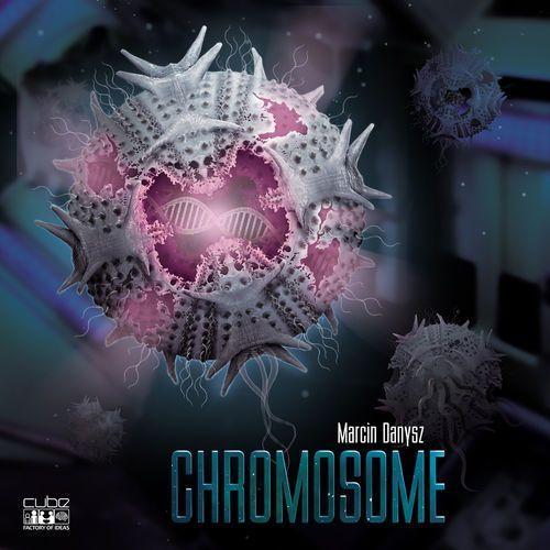 Gry dla dzieci, Chromosome (edycja polska) - CUBE