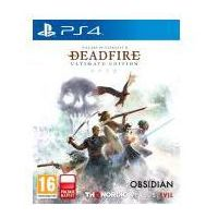 Gry PS4, Pillars of Ethernity 2 Deadfire (PS4)