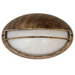 Kinkiet zewnętrzny lampa ścienna Rabalux Hektor 1x100W E27 IP54 antyczne złoto 8496