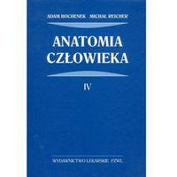 Książki medyczne, Anatomia człowieka tom 4 (opr. twarda)