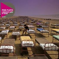 Pop, PINK FLOYD - A MOMENTARY LAPSE OF REASON (2011) (CD)