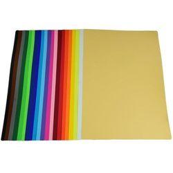 Karton kolor BAMBINO B1 100x70 270g op.20 - zielony jasny