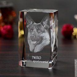 Zdjęcie 2.5D zwierzaka • Grawer 3D zdjęcia • ŚREDNI FOTOKRYSZTAŁ 3D