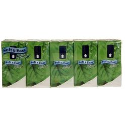 Chusteczki higieniczne Soft & Easy Mięta (10x10 sztuk)