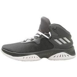 adidas Performance EXPLOSIVE BOUNCE Obuwie do koszykówki grey four/silver metallic