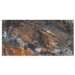 Gres szkliwiony polerowany Reefstone Ceramstic 60 x 120 cm 1,44 m2