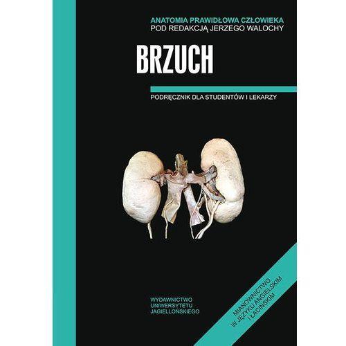 Książki medyczne, Brzuch Anatomia prawidłowa człowieka (opr. miękka)