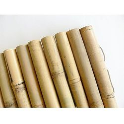 Bambusowy płotek ogrodowy – Bamboo Bord 1x0,35m