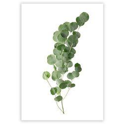 Dekoria Plakat Eucalyptus Green, 40 x 50 cm