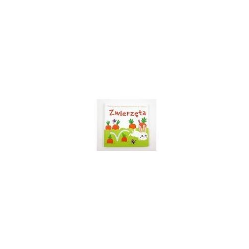 Książki dla dzieci, Dotknij, poczuj i podążaj po śladzie. Zwierzęta (opr. kartonowa)