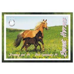 Blok rysunk.A4/20k biały Sweet Horses Starpak