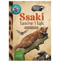 Książki dla dzieci, Młody obserwator przyrody. ssaki lasów i łąk - małgorzata wilamowska (opr. broszurowa)
