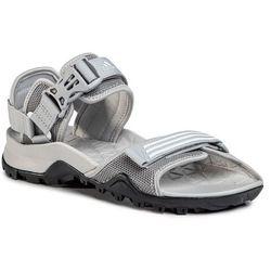 Buty adidas - Cyprex Ultra Sandal Dlx W EE9995 Gretwo/Ftwwht/Cblack