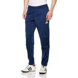 Spodnie dla mężczyzn Adidas TIRO 17, niebieski, L