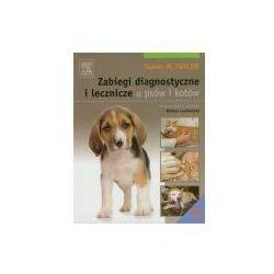 Zabiegi diagnostyczne i lecznicze u psów i kotów (opr. miękka)