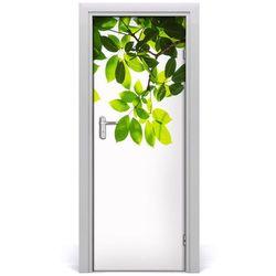 Okleina Naklejka fototapeta na drzwi Zielone liście