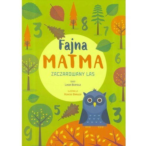 Książki dla dzieci, Fajna matma. Zaczarowany las (opr. broszurowa)