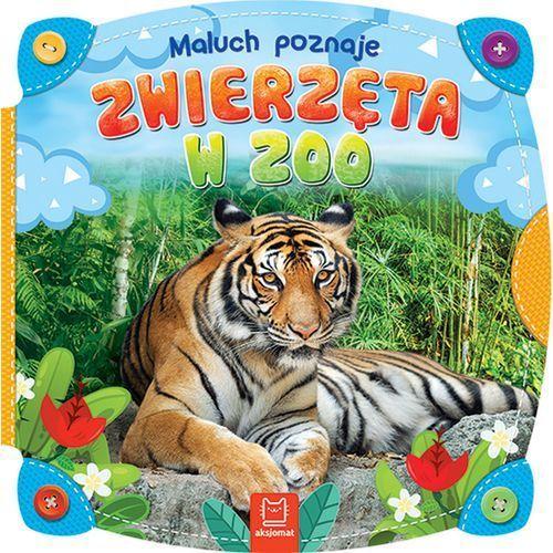 Książki dla dzieci, MALUCH POZNAJE ZWIERZĘTA W ZOO - Opracowanie zbiorowe OD 24,99zł DARMOWA DOSTAWA KIOSK RUCHU (opr. kartonowa)